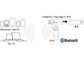 Receptor Bluetooth BT100