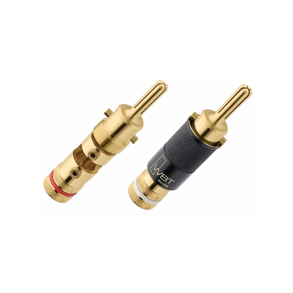 Conector WBT 0644