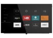 Loewe BILD 5.55 MONITOR TV...