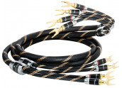 Vincent Single Speaker Cable